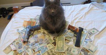Финансите
